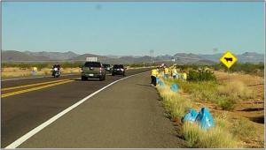 Blue bags collect trash on the side of Carefree Highway.