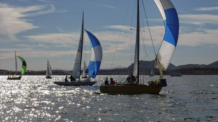 Running from Horse, PHRF Spin boats chase downwind. Photo: Bill Cunningham