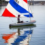 Junior and Sunfish fleet